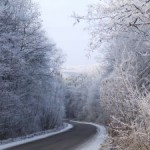 Icy Roads and Trees Charlotte Injury Attorney North Carolina Tractor Trailer Lawyer