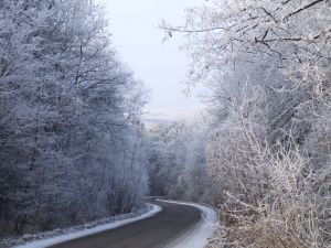 Icy-Roads-and-Trees-Charlotte-Injury-Attorney-North-Carolina-Tractor-Trailer-Lawyer