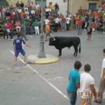 Running of the bulls Charlotte Injury Lawyer North Carolina Wrongful Death Attorney