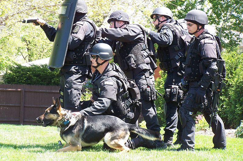 swat team essay Lapd swat team the concept of special weapons and tactic teams originated in the late 1960's as a response to several sniping incidents against civilians and police.