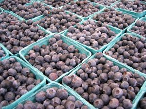 farmers-market-blueberries-Charlotte-Monroe-Lake-Norman-Personal-Injury-Lawyer-300x225