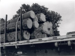 logging-truck-Charlotte-Monroe-Lake-Norman-Personal-Injury-Law-Firm-300x225